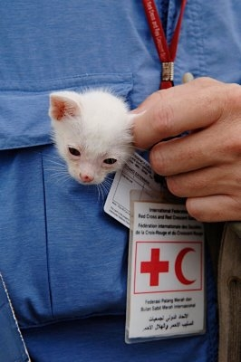A great pic is from Olav Saltbones from the International Federation of the Red Cross and Red Crescent